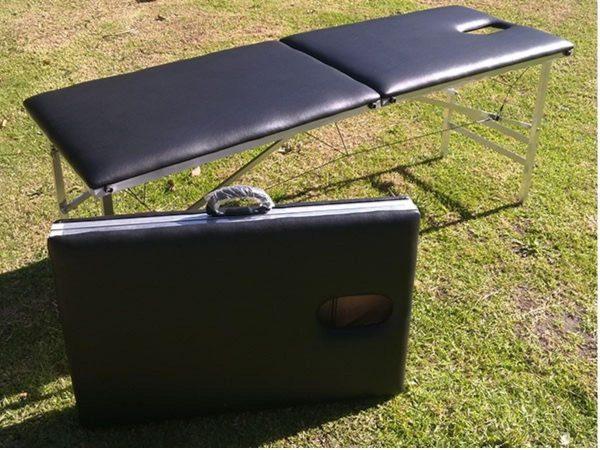 standard-model-portable